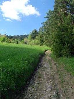 Początek trasy Rabka Zaryte - Luboń Wielki