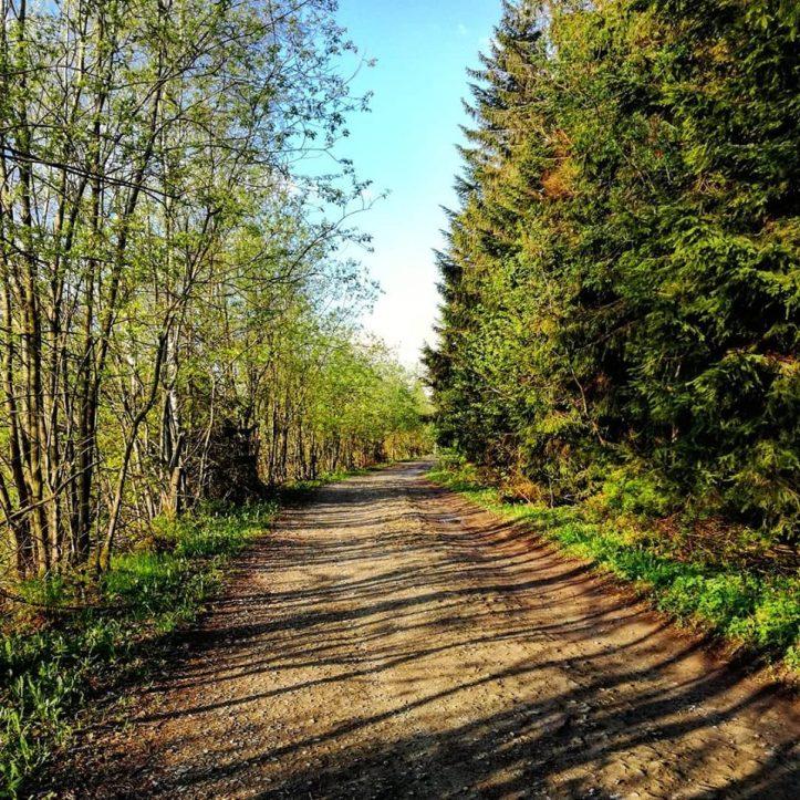 koskowa trasa2