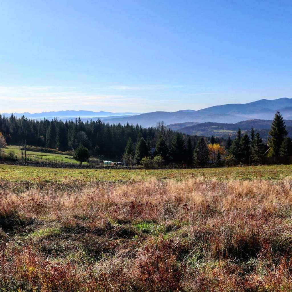 Widok z Koskowej Góry w kierunku Babiej Góry i Tatr